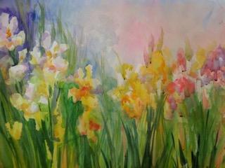 Iris 20 x 30 Watercolor
